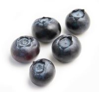 Blueberries small -5