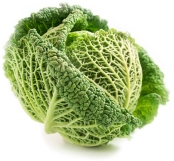 savoy cabbage smaller